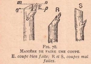 taille (Copier)